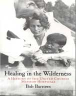 Healing in the Wilderness Book cover
